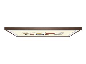 Samsung frame VG-SCFN43DP
